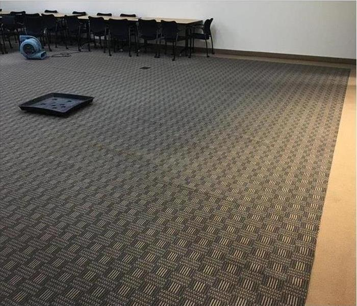 Carpet in commercial conference room soaked with water.