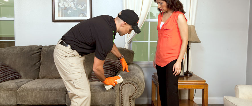 Carlsbad, CA carpet upholstery cleaning