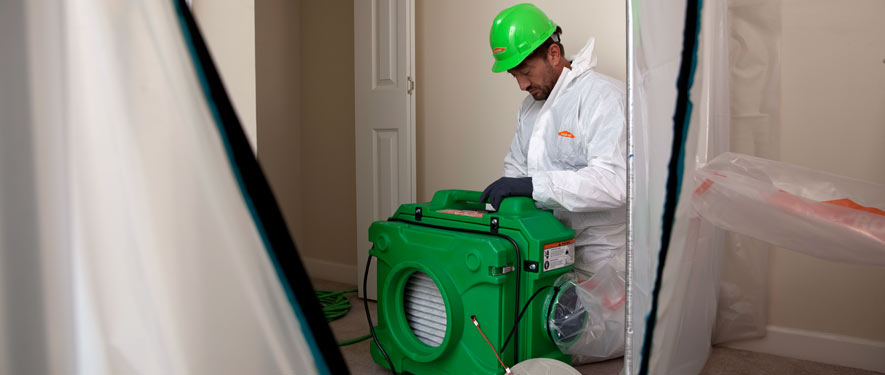 Carlsbad, CA mold cleanup